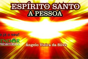 LIVRO DE BOLSO 11: ESPÍRITO SANTO, A PESSOA