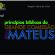 LIVRO DE BOLSO 05: PRINCÍPIOS DA GRANDE COMISSÃO EM MATEUS